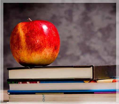 cuadro-manzana